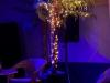 2014-12-white-xmas-party-bungalow4